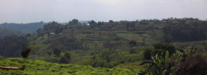 Rwanda's Expropriation Law: Is it serving the poor?